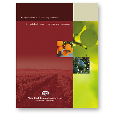 Mary Roach Insurance Agency | Company Brochure